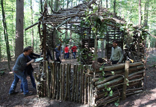 Building a Forest Cabin